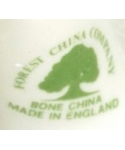 Forest China Company