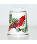 Songbirds Of The World Series - Cardinal