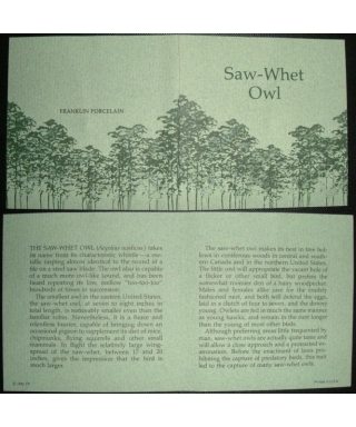 Saw-Whet Owl - certificate