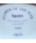 Spode - Iris
