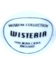 Museum Collection - Wisteria