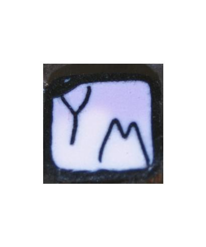 YZ (Yaz Molina)