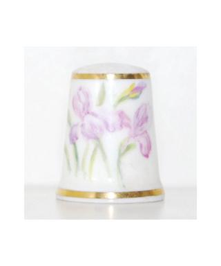 Irises - Daisy Rea