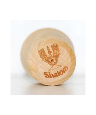 Menorah shalom