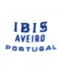 IBIS AVEIRO PORTUGAL