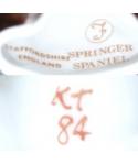Francesca (brązowy Springer Spaniel, K Taylor), Staffordshire