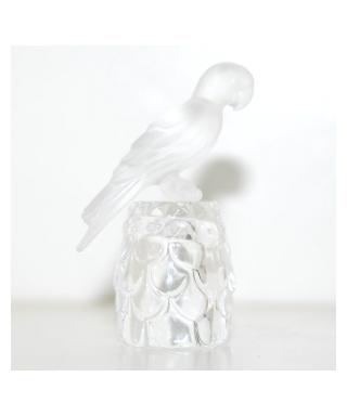 Papuga na naparstku w kształcie szyszki