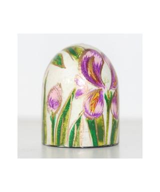 India - irises