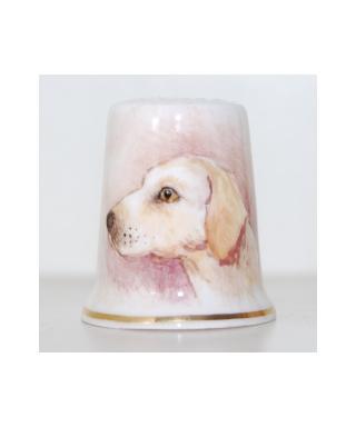 Labrador - Sheila Whitcombe