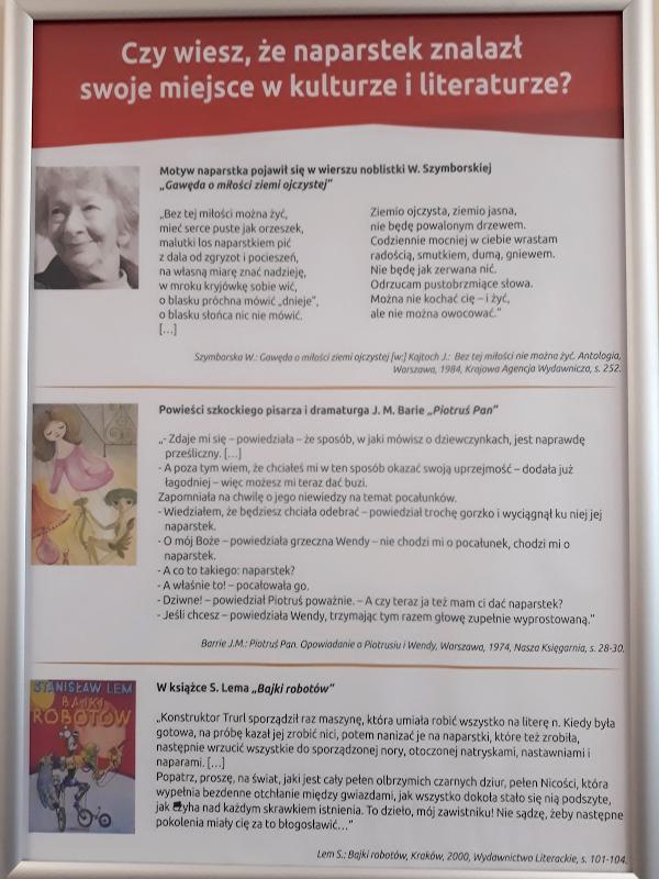 pod złotym naparstkiem library opening - 11